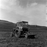 preparing the soil, sowing