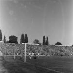 """football - """"U"""" - Craiova"""