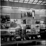 Exhibition 1984, notice board