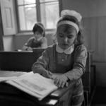 Gherla, Ana Ipătescu School
