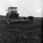 spring sowing