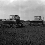 sowing in spring
