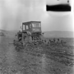 Mechanical hoeing, corn