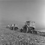 Tractor drivers, Floreşti