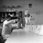 Turda research station