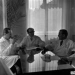 Doctor Grigore Viorel, Holan, Lucaci