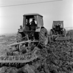 sowing, prepairing the soil, Maia