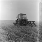mechanized corn hoeing