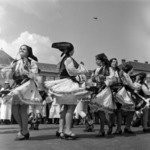 néptáncok ( hungarian team )