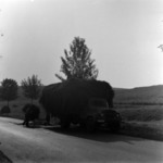 hay transporting, combine harvesters on the road, harvest