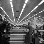 """""""Laborer Romania"""" 30th of March 1970"""