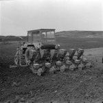 agriculture, preparing the soil, corn sowing