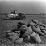 agriculture, plowing after harvesting, collecting hay
