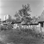 Old Mănăştur