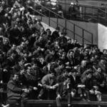 football CFR Cluj-CFR Timişoara, suporteri