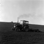 agriculture, potato seeding, beetroot, field preparations