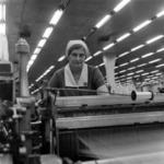 """""""Laborer Romania"""""""