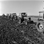 plowing, lots of tractors