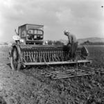 disking, sowing corn