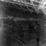 women's handball, Romania-Hungary, R.DG