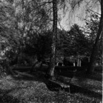Botanical garden autumn