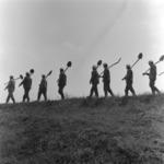 young brigades