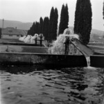 trout rearing Gilău