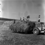 forage transporting