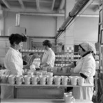 Porcelain factory