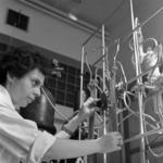 I.F.A. Laboratory, catalysis